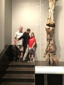 dinosuars in alberta, drumheller, royal tyrrell museum
