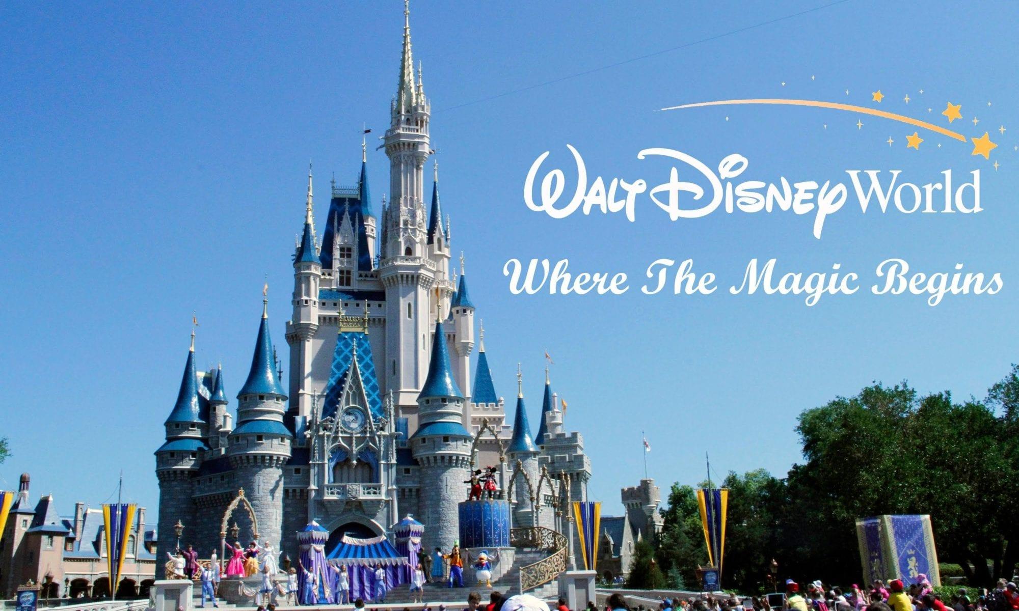 Disney Castle, Orlando Florida